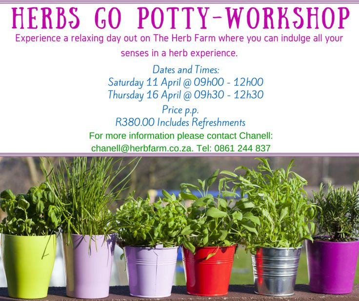 Herbs Go Potty  - Workshop.  Experience a relaxing day out on The Herb Farm where you can indulge all your senses in a herb experience.  *Learn how to plant up a Herb Container and  grow your own herbs. *Learn how to make useful medicinal, culinary and cosmetic  preparations with 8 different Herbs