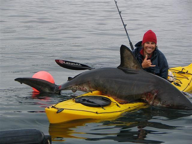 I want to do this!  Kayak Shark Fishing    erwinnavyanto.in