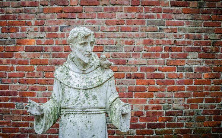 """4 oktober is de feestdag van de grote St. Francis van Assisi! St. Francis van Assisi is één van de bekendste en meest geliefde heiligen van de kerk. Onze huidige heilige vader paus Francis nam de naam """"Francis"""" na hem."""