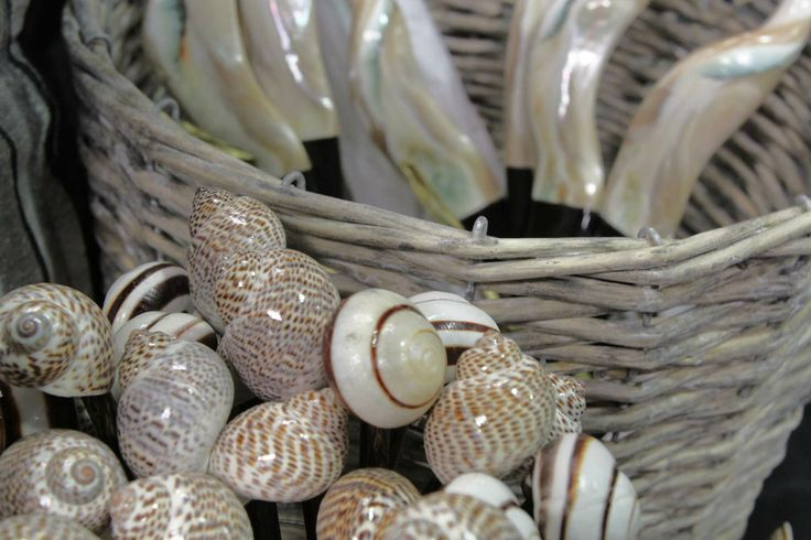 Hand selected giftware - these shell stirrers and serving spoons make fantastic presents.