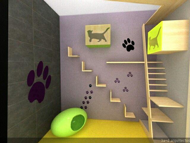 Hotel para perros y gatos. Un espacio comodo para que disfruten su estancia gatos y perros pequeños.