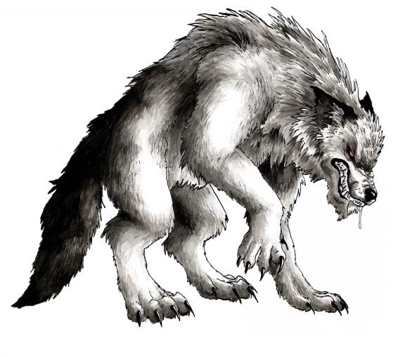 Assez 12 best loup garou images on Pinterest | Werewolf, Werewolves and  KN52