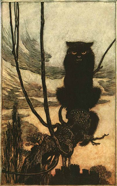 "Arthur Rackham's illustration of the black cat in the German fairly tale ""Jorinde and Joringel"" from The Brother's Grimm, 1909."