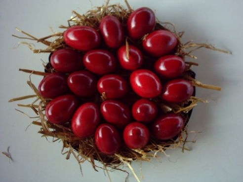 red eggs, Pascha so shiny, beautiful