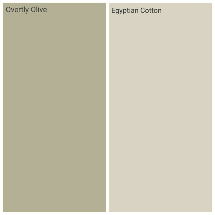 Dulux overtly olive and egyptian cotton, kichen family room!