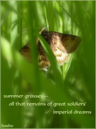 """""""summer grasses - all that is left of great soldiers' imperial dreams"""" - bashoForm Poetry, Haiku Basho, Imperial Dreams, Haiku Mindfulness, Haiku Japan Poetry, Japanese Culture, Haiku Japanese Poetry, Haiki Master, Basho Matsuo"""