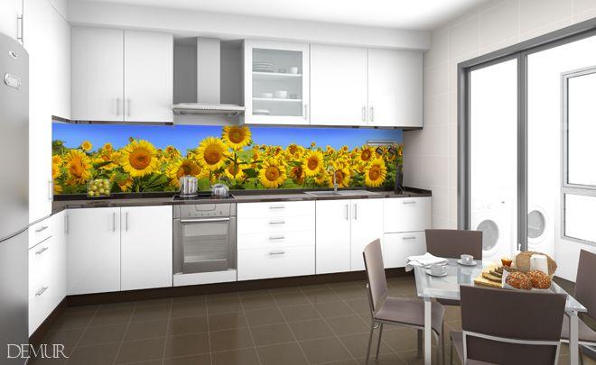 Plantacja słonecznika