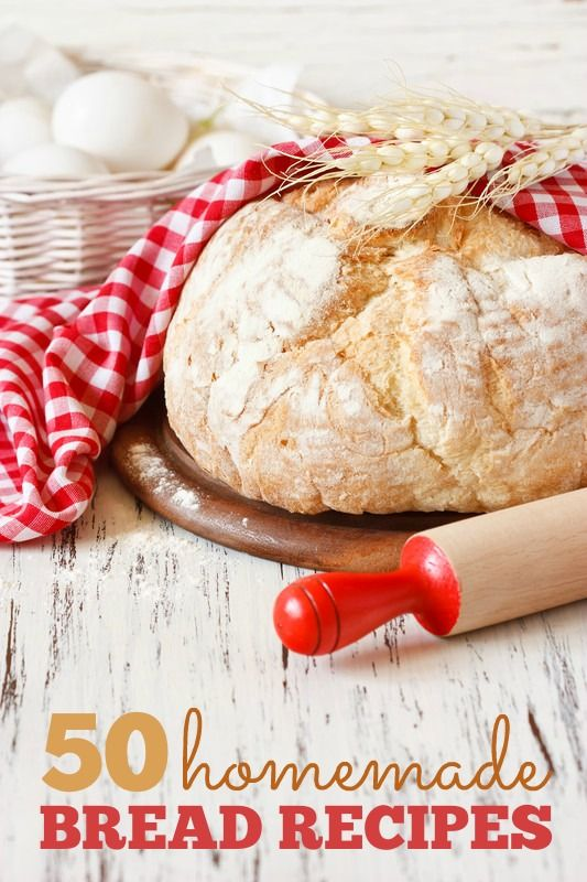 50+ Homemade Bread Recipes from around the web -- So many delicious recipes, including our favorite No-Knead Bread!