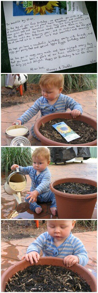 First birthday tradition starting - seeds that can be replanted and reharvested each year!