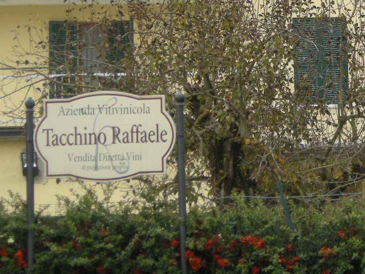 Autumn in Castelletto d'Orba - Tacchino Raffaele