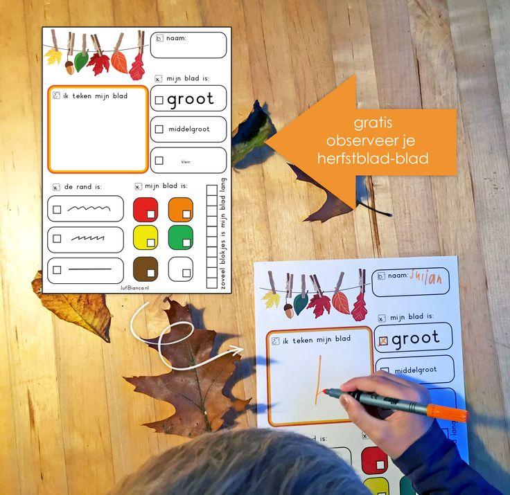 Op dit werkblad kunnen kinderen hun bevindingen over hun herfstblad kwijt Ze kijken welke kleur het blad heeft, hoe de rand eruit ziet. Is het groot of klein en hoeveel blokjes is het blad lang? Met dit eenvoudige blad laat je de kinderen de herfst ontdekken!