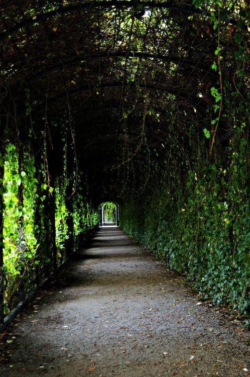 Schönbrunn Gardens, Vienna
