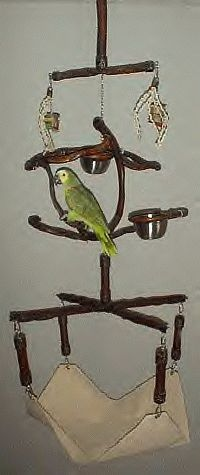 I really want one or 2 of these for my parrots!