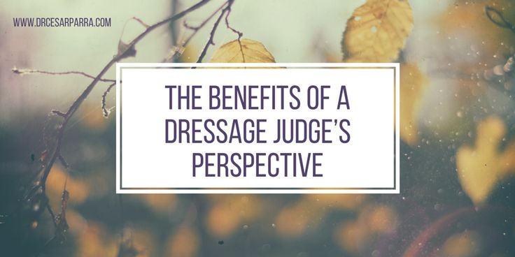 The Benefits of a Dressage Judge's Perspective by Dr. Cesar Parra