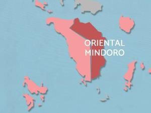 Police arrest 2 suspects in killings of Puerto Galera councilor son