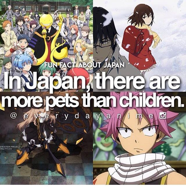 Anime facts  If you care about ending poverty and reducing homelessness go to http://www.fuzeus.com