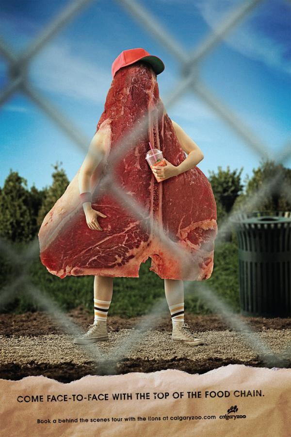 Creative Zoo Ad