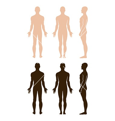 Naked standing man vector 659519 - by arlatis on VectorStock®