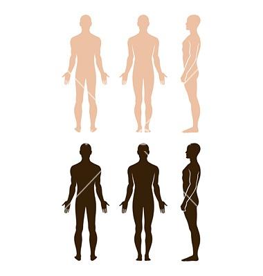 Naked standing man vector 659519 - by arlatis on VectorStock®