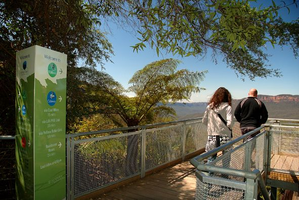 Discover the tranquility of ancient rainforest – or simply tire the kids out – strolling along our 2.4 kilometre Scenic Walkway.