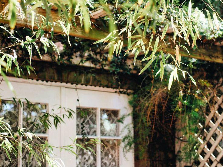 #саванна #джорджия #сад #сша #америка #путешествие #savannah #georgia #savannahga #garden #usa #travel http://tipsrazzi.com/ipost/1521381453362814704/?code=BUdCF8Hjt7w