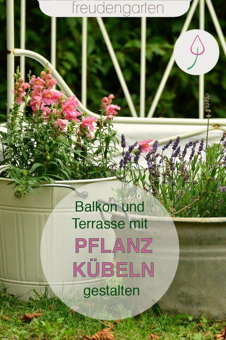 Garten Und Balkon Mit Pflanzkubeln Und Topfpflanzen Gestalten In 2020 Terassen Bepflanzung Pflanzen Terrasse Pflanzen
