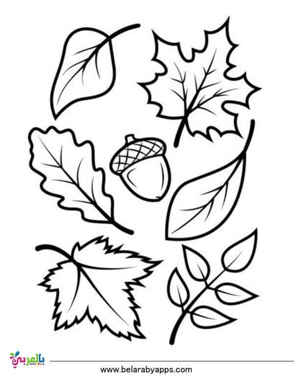 رسومات للتلوين عن فصل الخريف جاهزة للطباعة 2020 بالعربي نتعلم School Classroom Animals Rooster