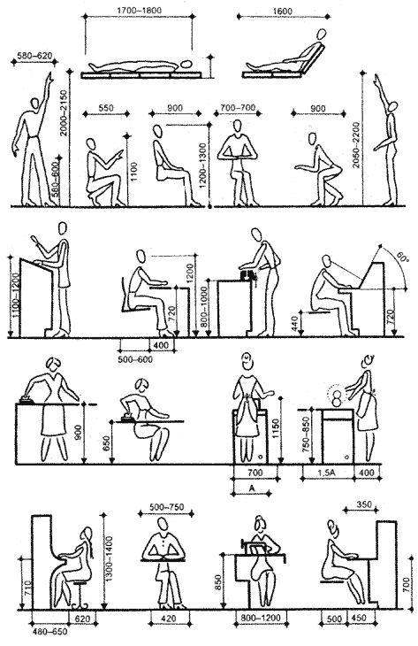 Положение тела оказывает влияние на деятельность всех органов человека, поэтому при проектировании интерьера необходимо учитывать эргономические нормы и требования....