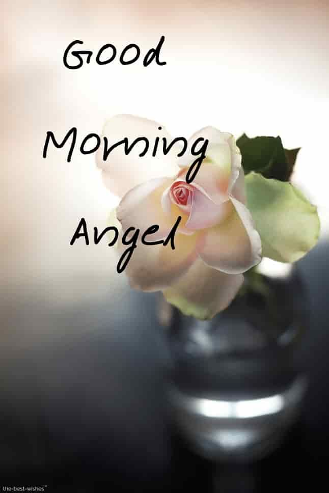 120 Best Good Morning Angel Images Good Morning Love Love Good Morning Quotes Good Morning Sweetheart Quotes