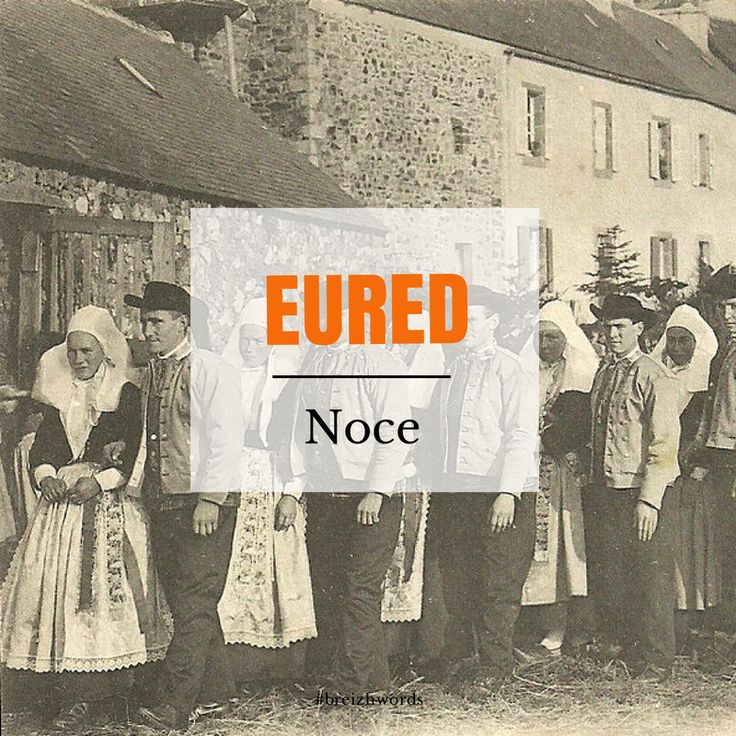 Noce à Plougastel #breizhwords #bretagne #bzh #breizh #brittany #breton #finistère #noce #wedding #traditionnalwedding #plougastel