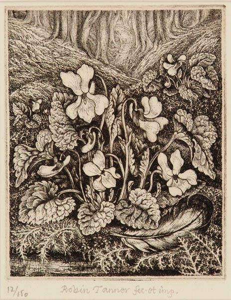Robin Tanner (1904-88). White violets,