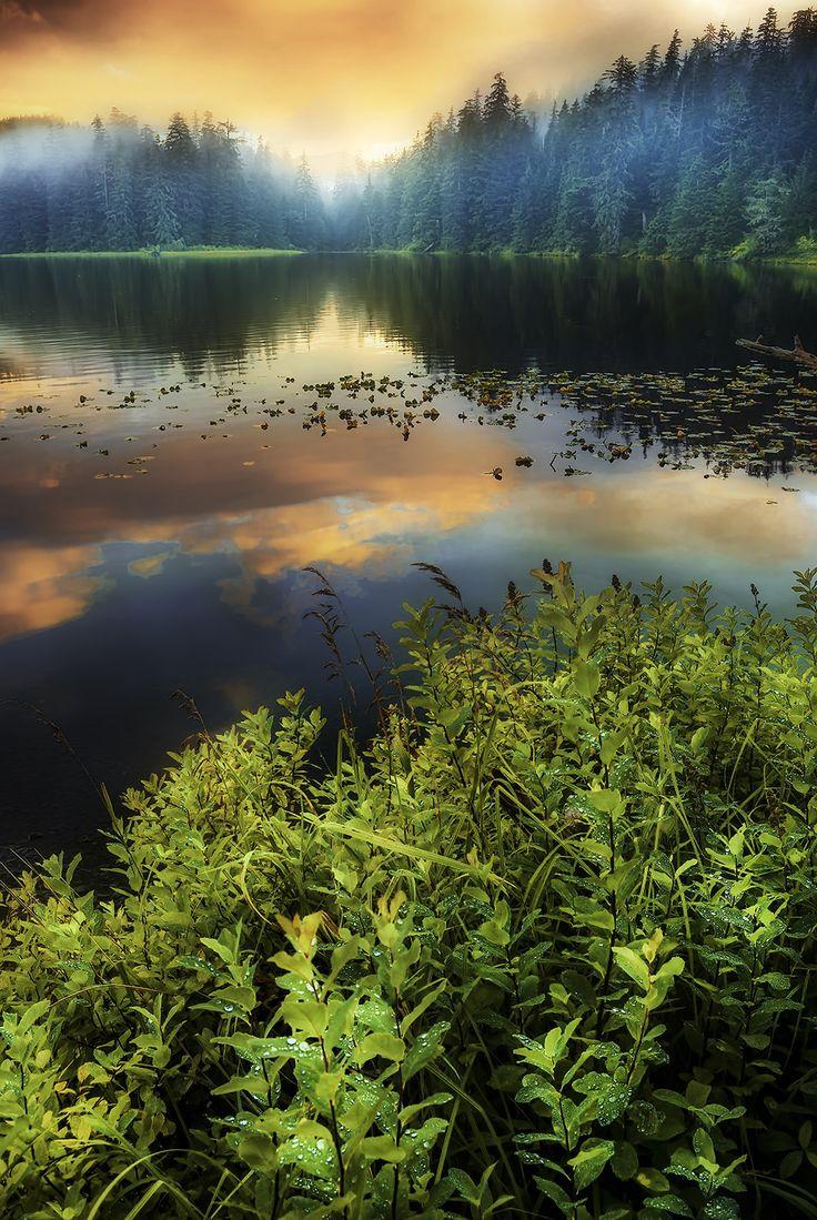 ~~By the Lake | Ketchikan, Alaska | by Carlos Rojas~~