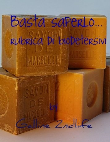 http://galline2ndlife.blogspot.it/p/basta-saperlo.html