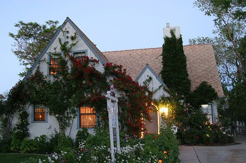 gardening and curb appeal, curb appeal, gardening, Evening at The Garden Cottage