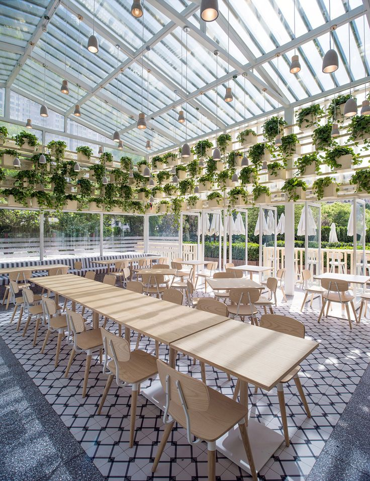 A glass building in Beijing has been converted into a cafe, with added walls of plants to purify polluted air.