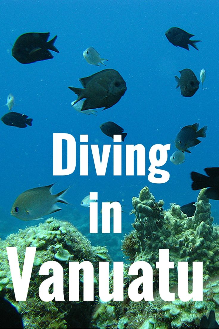 You Should Go Diving in Vanuatu