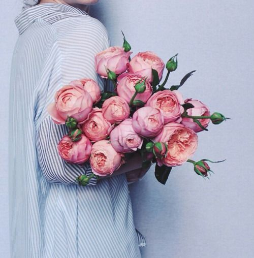 """She handed her the flowers with a shy smile. """"I, uh, didn't know if you were a flower person or not, but they were really pretty. Um, sorry if you don't like them, I can take them back if you-""""  """"Kath,"""" she interrupted, eyes dancing.  """"Yes?""""  """"They're perfect. Thank you."""""""