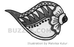 shells1.jpg (250×160)