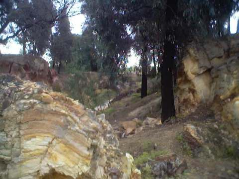Rollover of anticline in front of Ballerstedt's open cut (mining the saddle reef), Victoria Hill, Bendigo, Australia