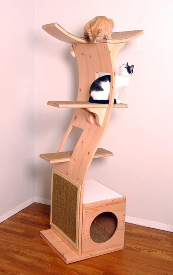 A cat playhouse ? Like the term, definitely a great way to enrich the cattery's environment. Always a plus when we know all the stress-related side-effects in these structures !