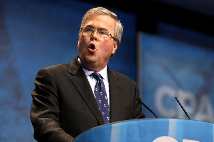 Jeb Bush, Brother of Famous Painter, Considers Presidential Bid - Possibly least surprising news of the year given a new spin at FreeDailySameness.com