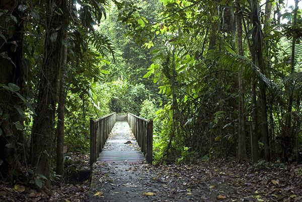 Costa Rica Family Eco-Adventure Package, Volcanoes, Caño Negro Wildlife Refuge, Tortuguero National Park