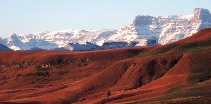 A History of a Drakensberg Valley: http://goo.gl/IR6GsQ  - Ahead of his attempt at running the inaugural Run the Berg, #CountryRunner is learning some of the fascinating history of the Northern Drakensberg. - This is the tale of how Gavin Everitt came to own Toplodge - one of the most secluded spots in this vast mountain range - many decades after his great grandfather acquired the land as grazing for his oxen.