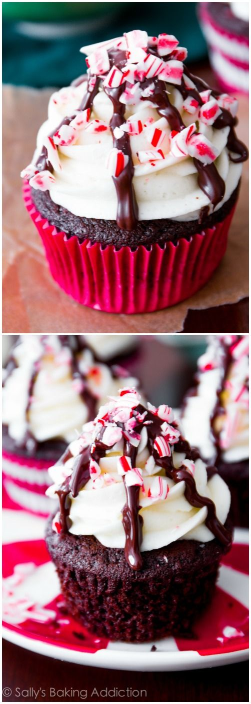 Peppermint Mocha Cupcakes on sallysbakingaddiction.com. Deep chocolate cupcakes flavored with peppermint and coffee, topped with peppermint vanilla frosting, candy canes, and a chocolate drizzle.