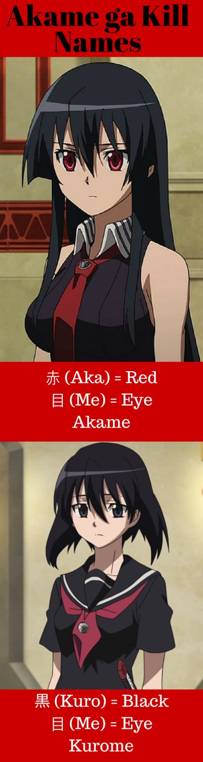 Akame ga Kill names - this is sometimes how must anime names are made.. based of personality or some pun