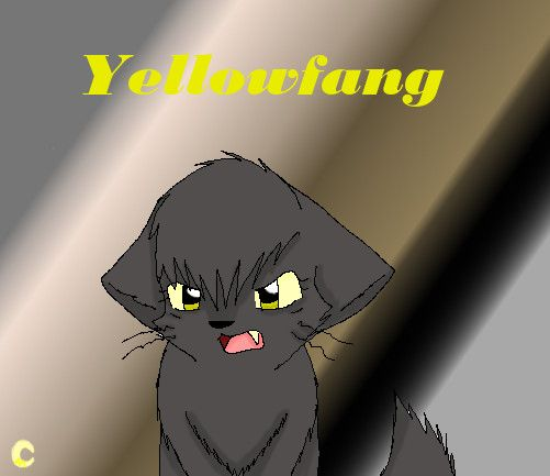 Warriors Into The Wild Ending: 1000+ Images About Yellowfang!!!! On Pinterest