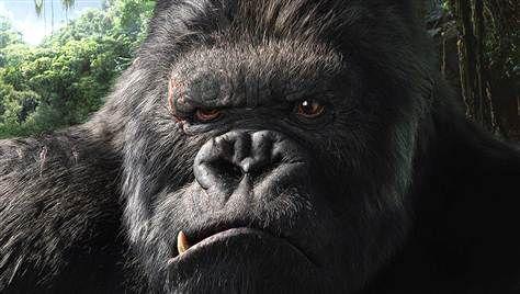 King Kong #Mariners #KingsCourtMember