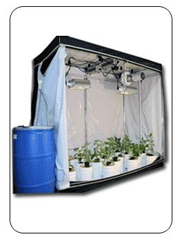 Pin By Deb Dibiasie On Grow Tents Indoor Hydroponics