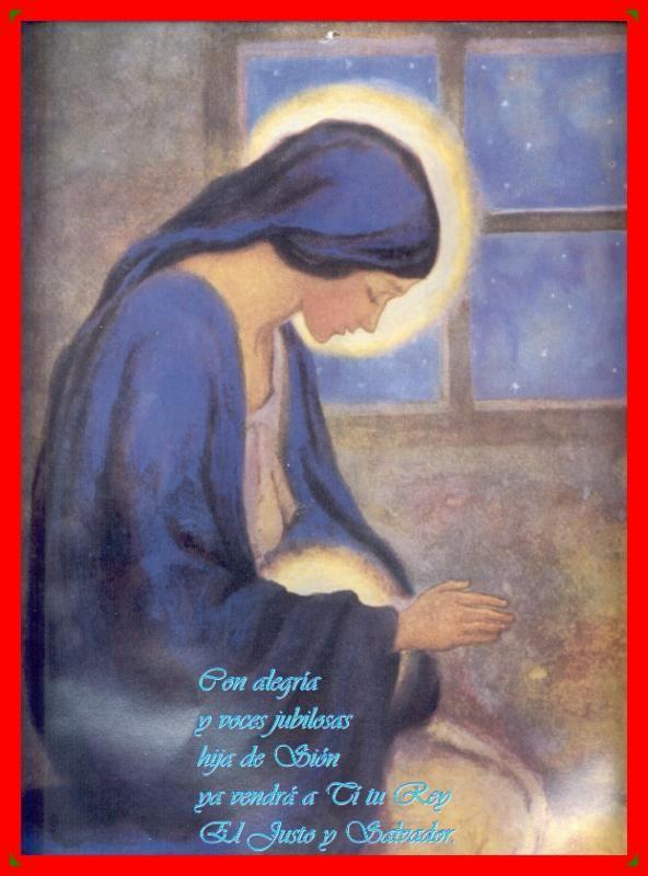 Reflexiones para el alma: Enfocados en Dios en medio de la prueba