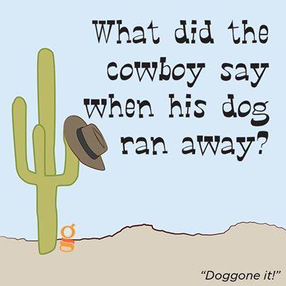#funny #jokes #humor